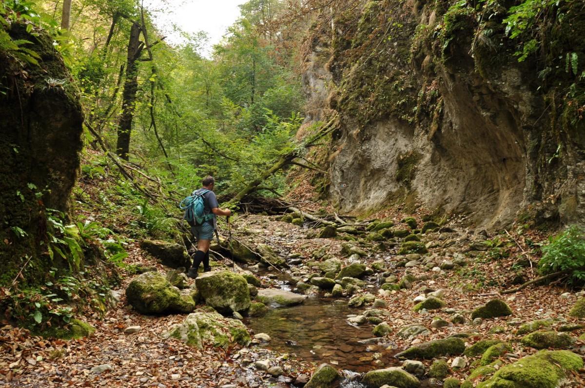 0409 Valea Sighistelului, Muntii Bihor_resize