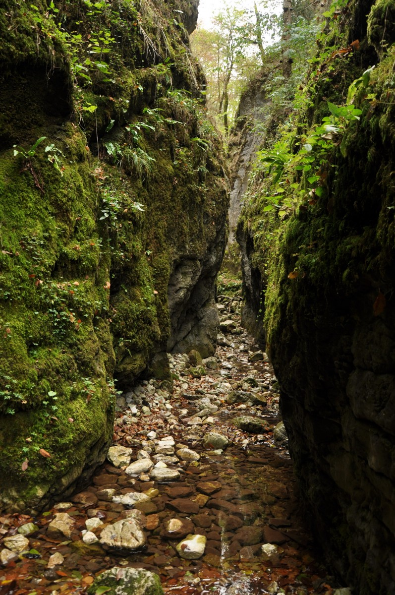 0450 Canionul Sighistel, Valea Sighistelului, Muntii Bihor_resize