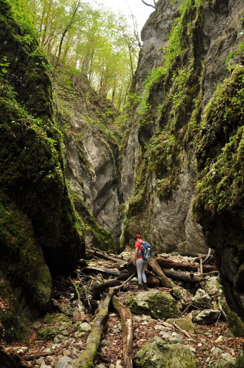 0470 Canionul Sighistel, Valea Sighistelului, Muntii Bihor_resize