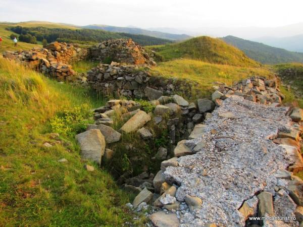 Zidurile de incintă ale cetăţii Tabla Buţii şi ruinele unui turn de apărare, în colţul stâng, pe care îl bănuim a fi situat în partea sud-estică a cetăţii