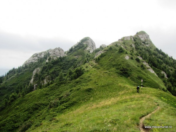 Cu privirile înapoi către cleanţurile Zăganului. Vârful Zăganu este cel din mijloc, abrupt pe-o parte.