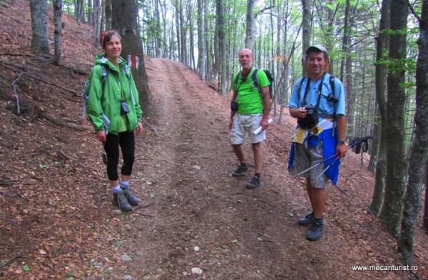 Prin pădurea de pe Culmea Văii Stânii: Emilia, George, Ştefan