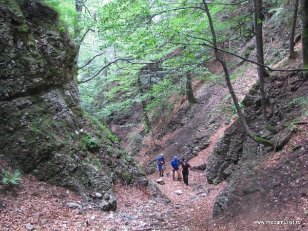 Străbătând în urcuş Cheile Pârâului Alb, în zona cea mai spectaculoasă – Doina, Dan şi Ştefan