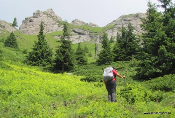 Poiana dominată de stâncării pe versantul sudic al Culmii Stâncoase
