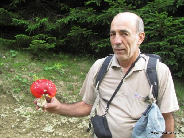 George şi discursul pe care ni-l ţine despre ciupercile otrăvitoare