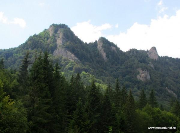 Stâncării în partea sudică a Culmii Şuviţelor, văzute din Valea Stânii de la bifurcaţia către Pasul Boncuţa