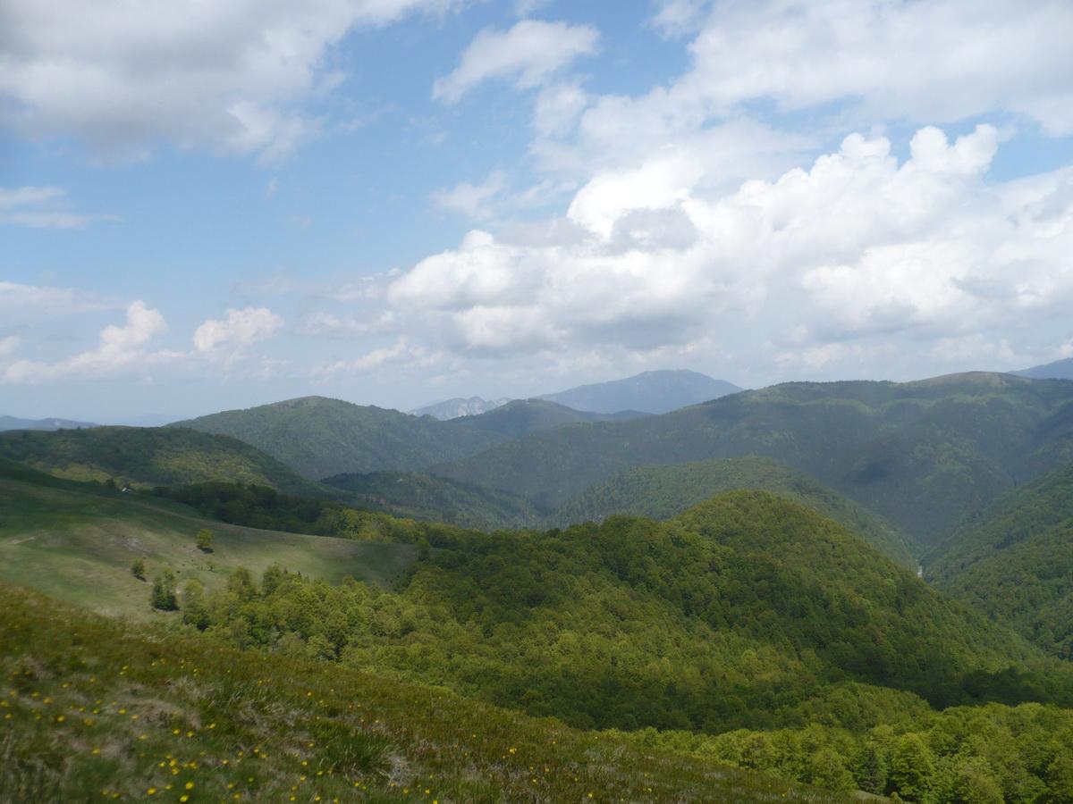 Vedere spre Ciucas