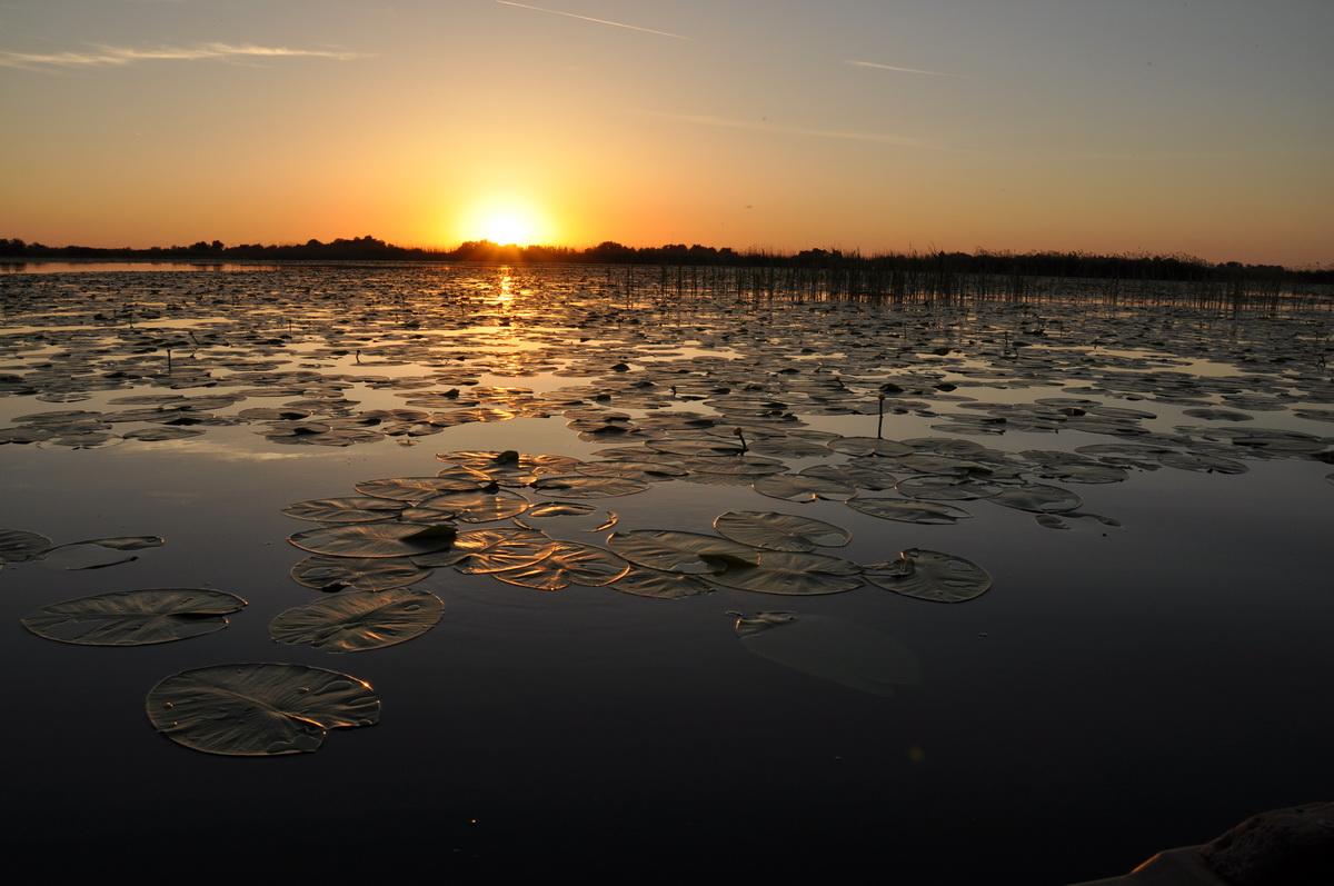 062 Lacul Potcoava, Delta Dunarii_resize