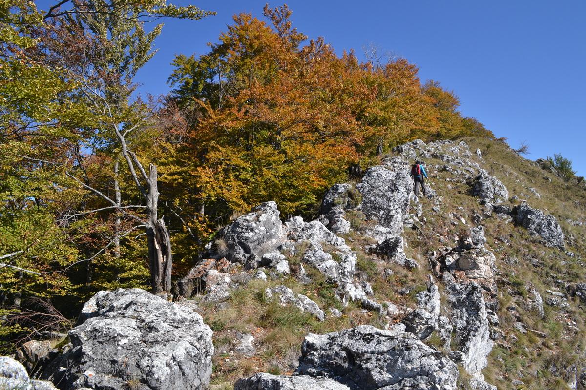 118 Leaota - Urcare pe Piatra Dragoslavele_resize