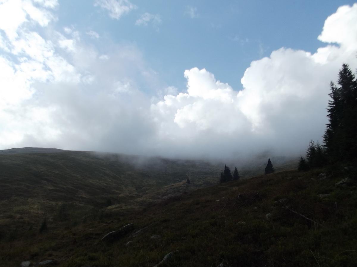 02. Se ridica ceata