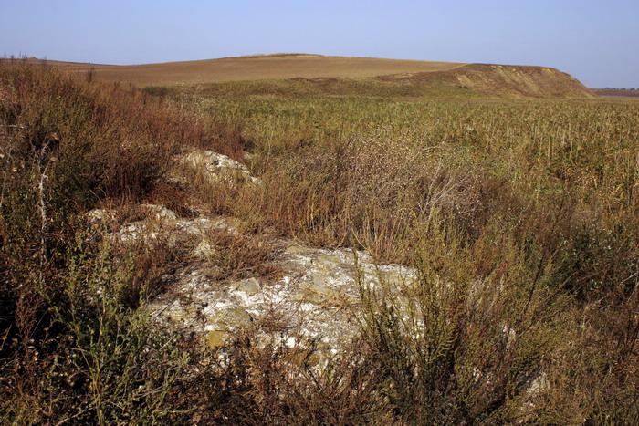 Cetatea zaporojeana Gratiana