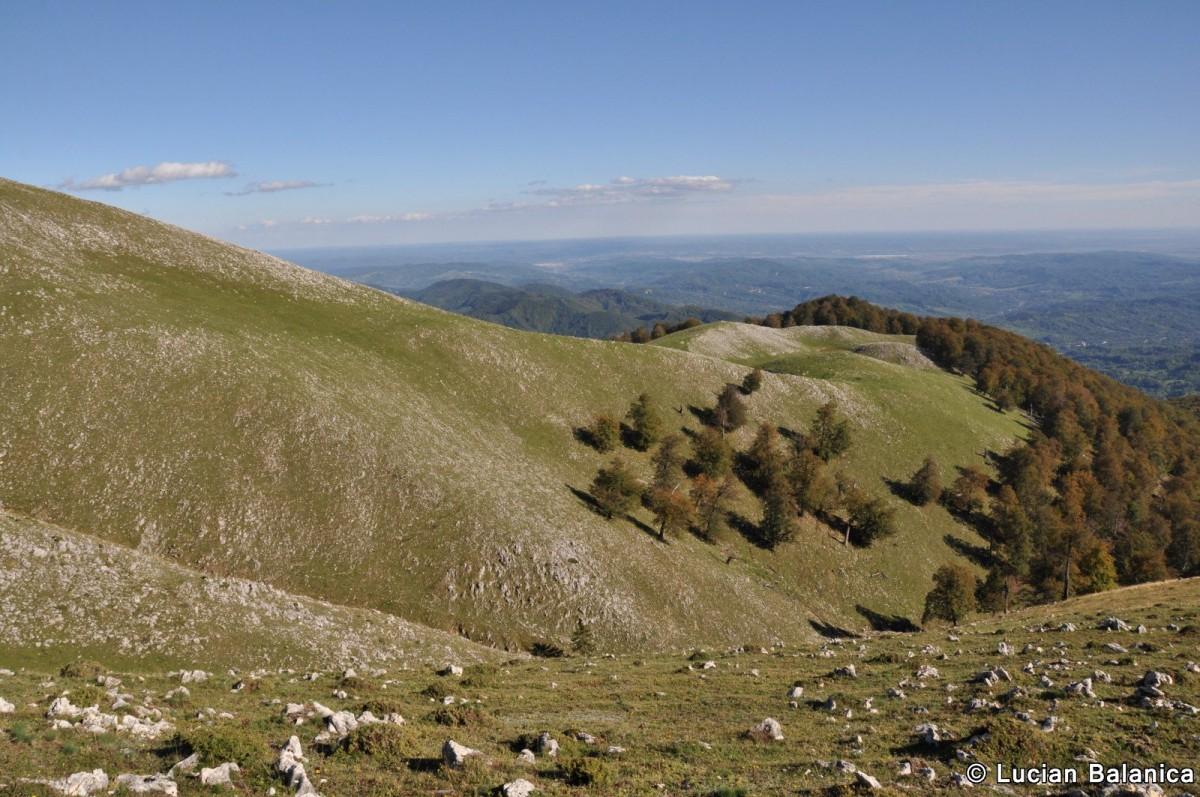 103 Muntele Cacova, Masivul Buila-Vanturarita