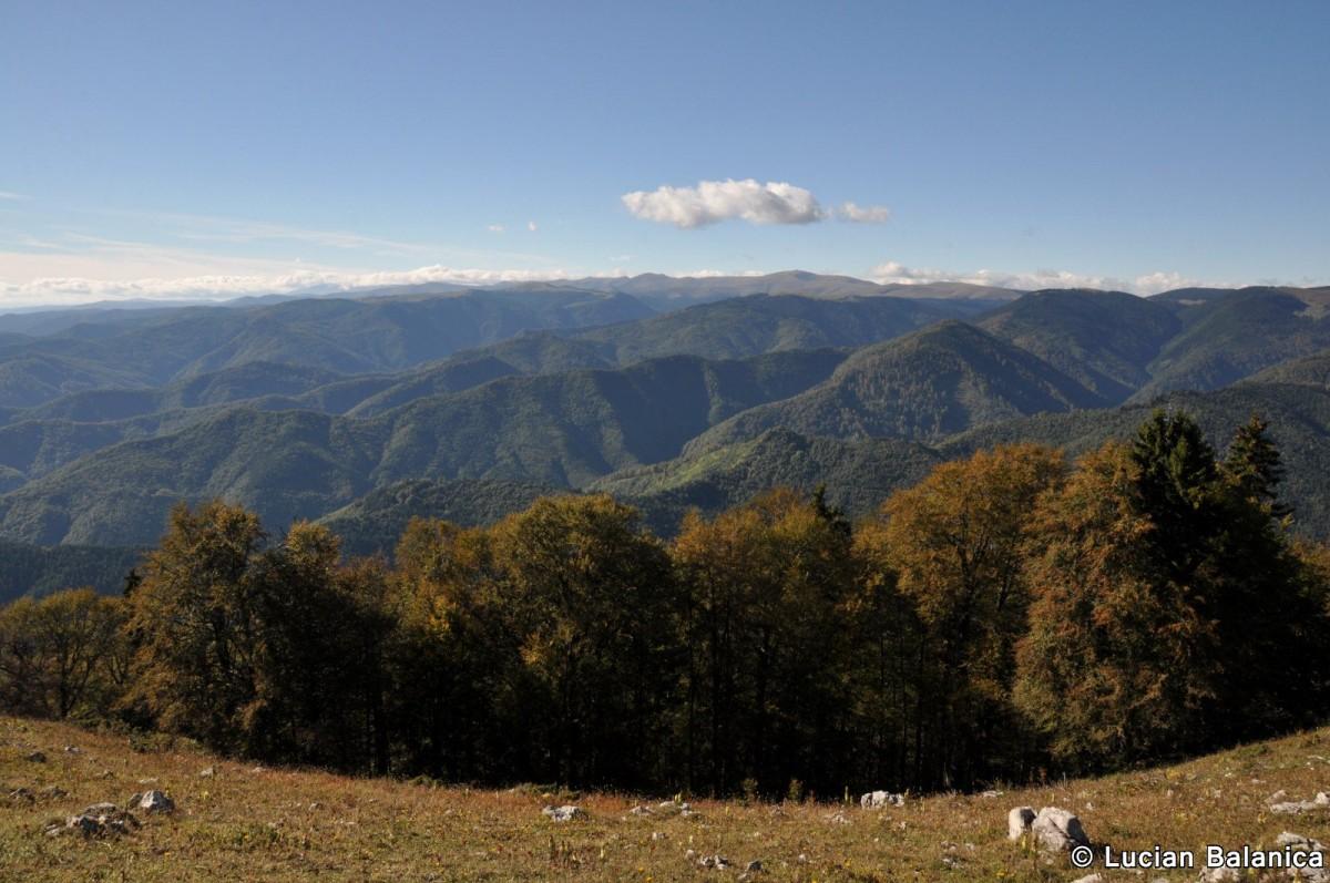 108 Muntele Cacova, Masivul Buila-Vanturarita