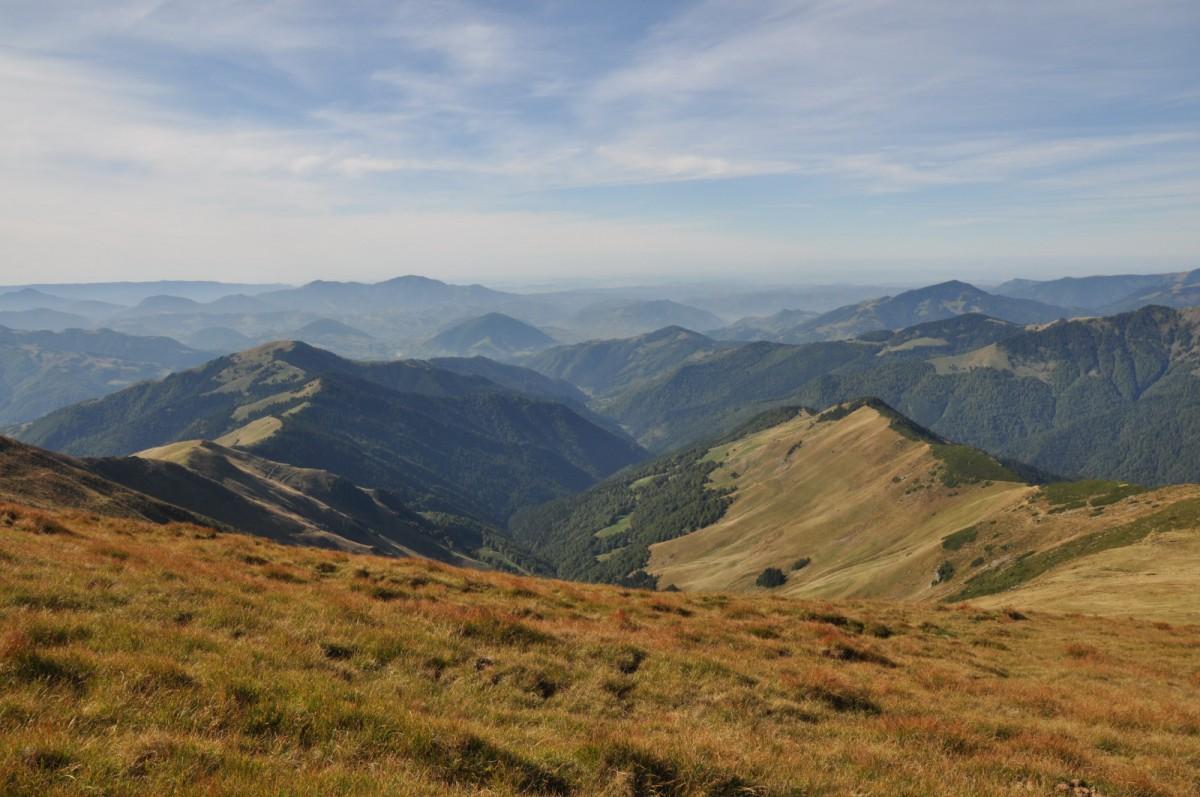 290 Saua Ineului 2223m, Traseul de Creasta intre Saua cu Lac 2140m si Saua Gargalau 1907m, Muntii Rodnei