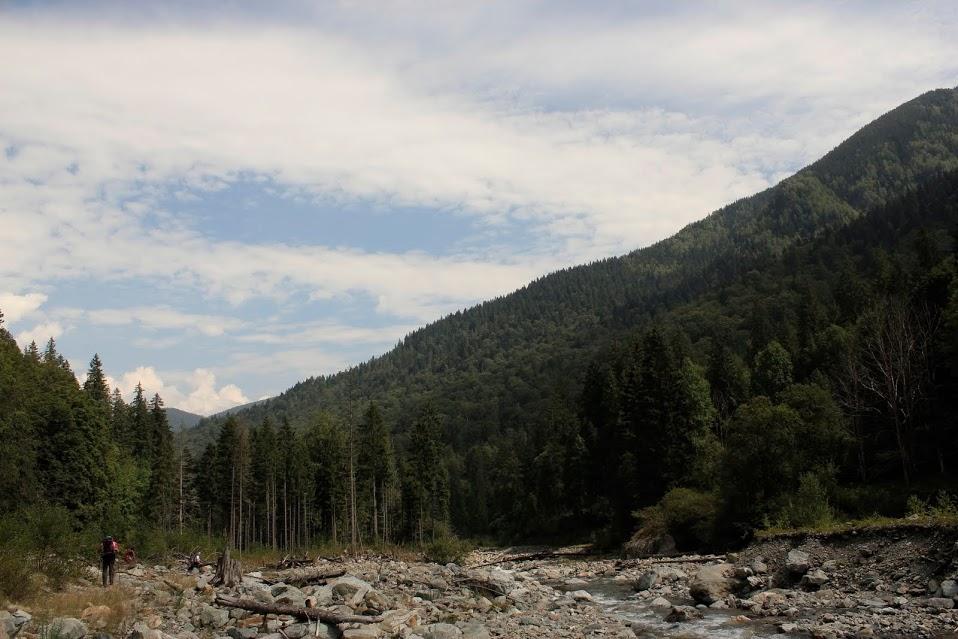 Pe valea Lăpușnicului mic