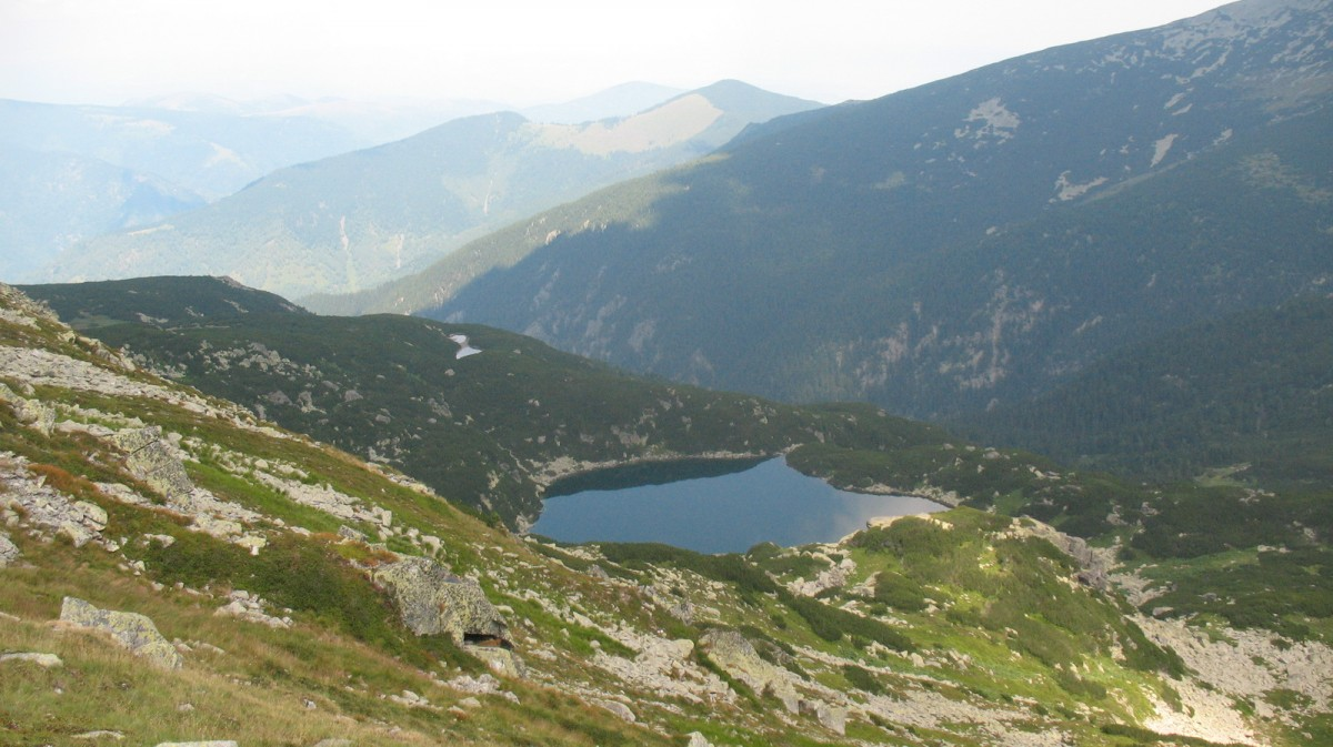 Romania mea