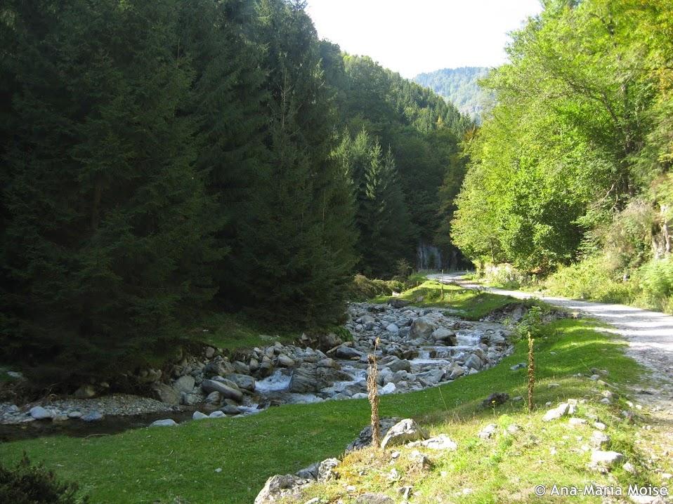 Valea Rudaresei
