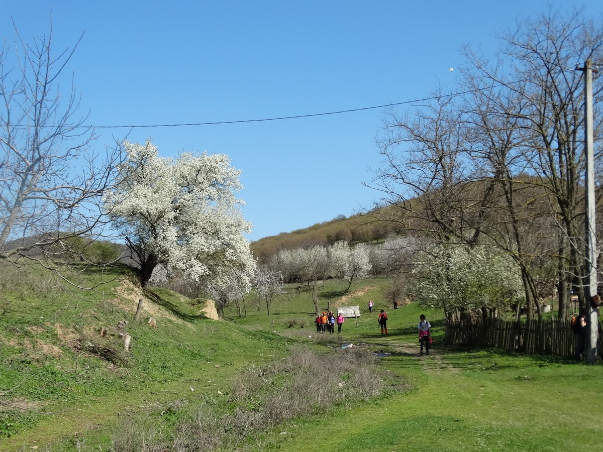 Carjelari 10 - La revedere Dobrogea