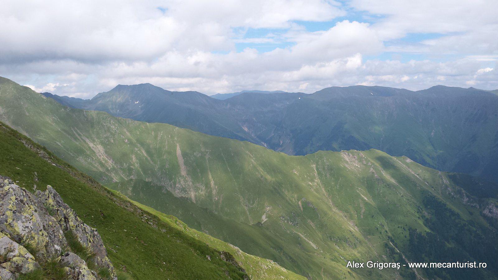 25-viistea-moldoveanu
